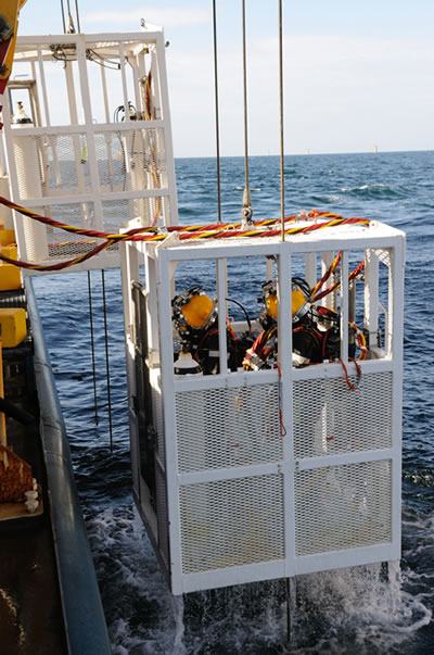 Divers arrive back on board after a stint underwater at the wind farm.