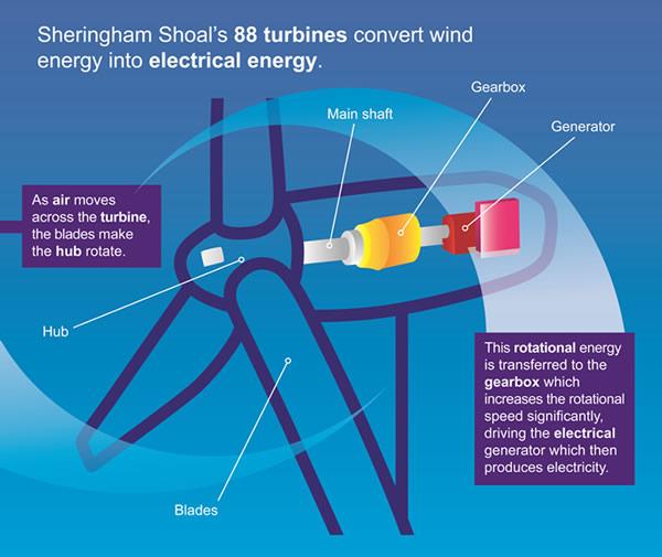 Internal schematic of a wind turbine