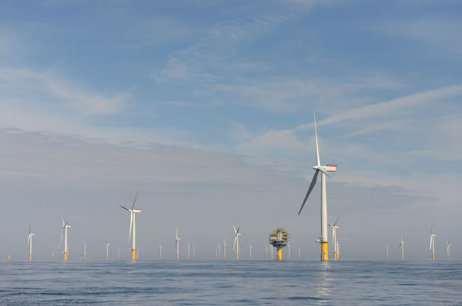 The turbines installed on the Sheringham Shoal site.